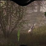Hunting Simulator Shows Off Animal Diversity